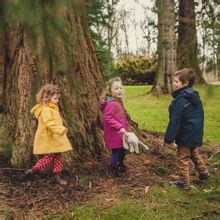 Activities for Kids   Scone Palace Perthshire